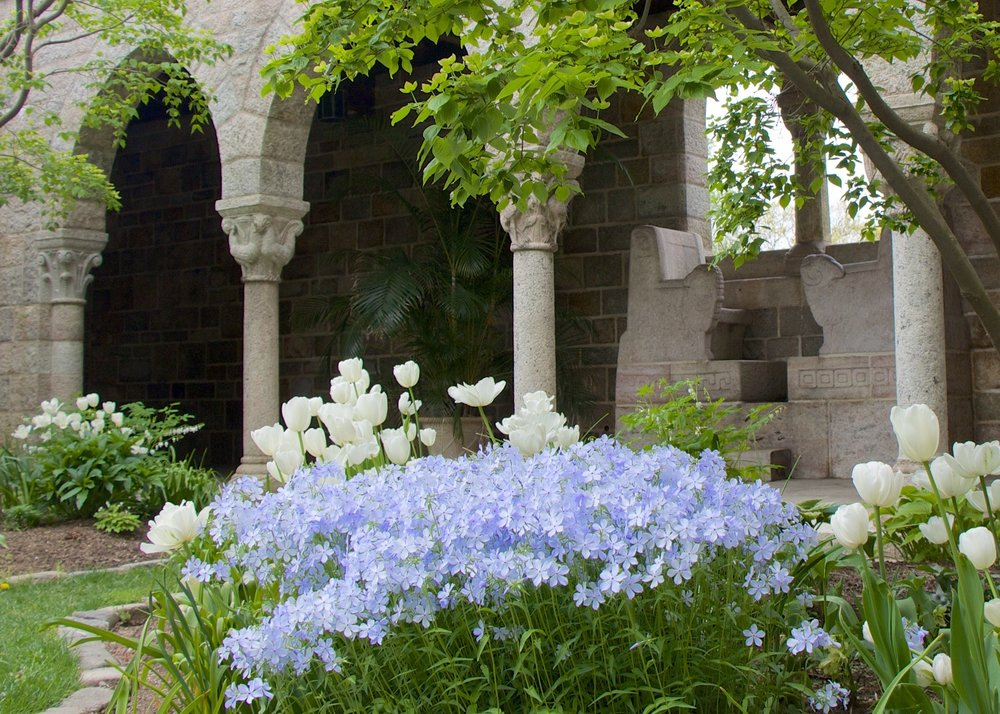 Figure 10: Late spring gardens in bloom in Glencairn's cloister.