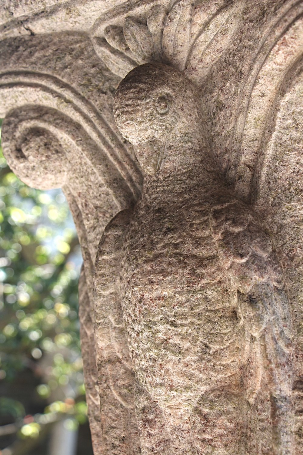 Figure 13: Cloister capital, east side: dove.