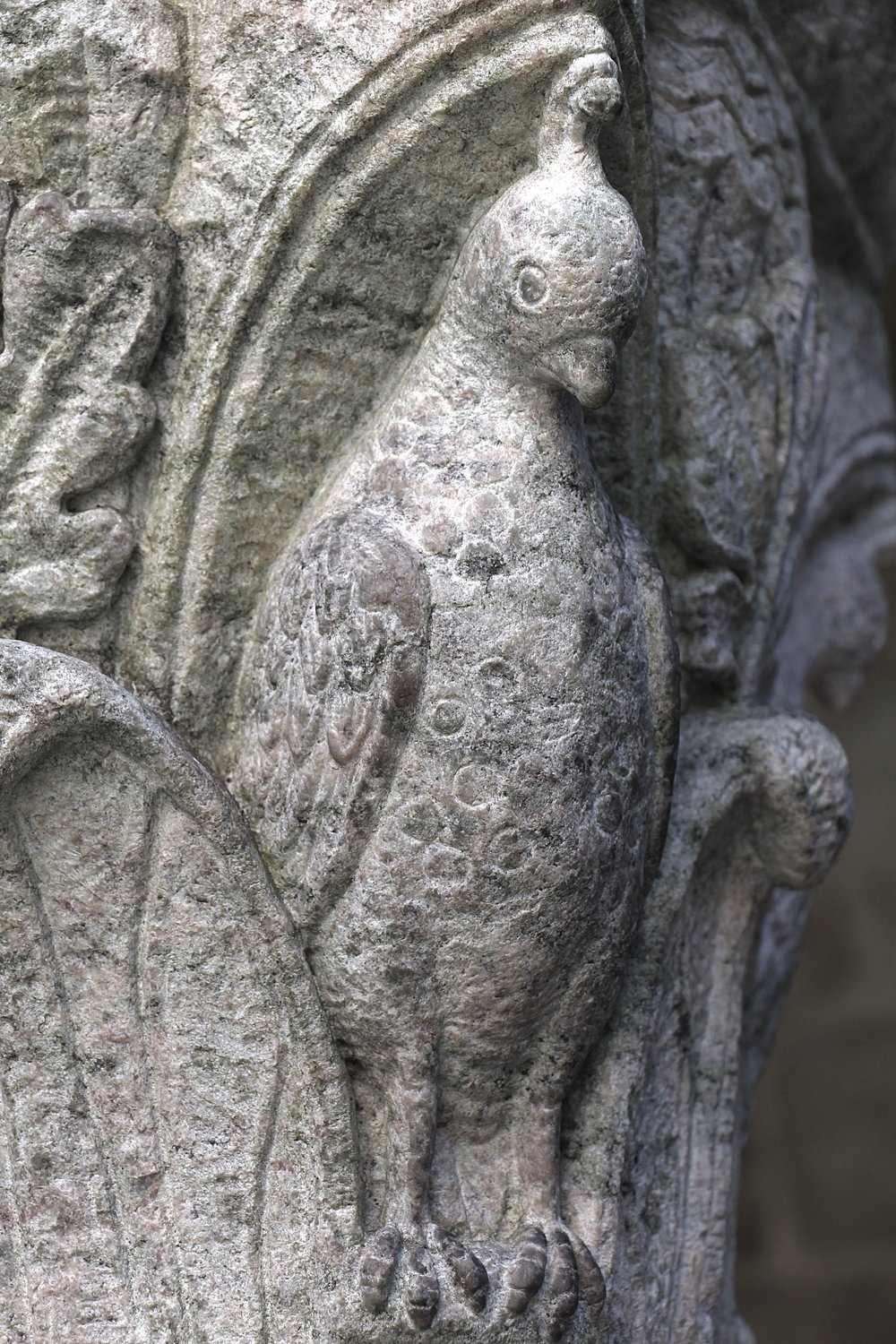 Figure 19: Cloister capital, west side: quail.