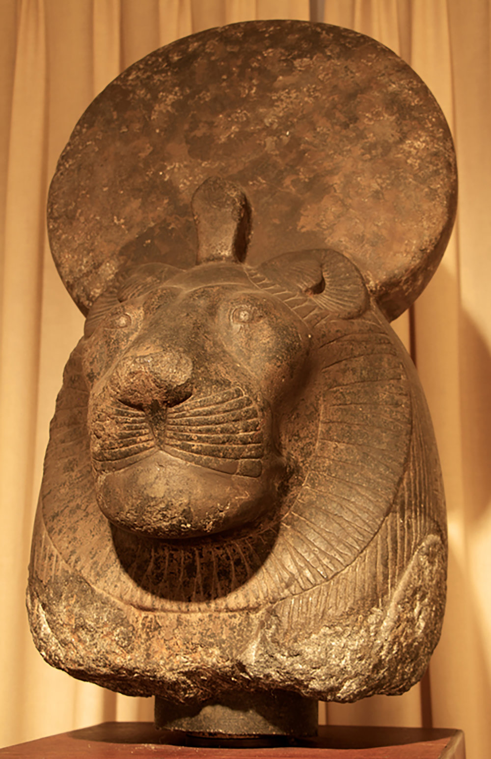Figure 23: Head from a granite statue of the goddess Sekhmet, New Kingdom (ca. 1391 BCE–1353 BCE). Glencairn Museum E1157.