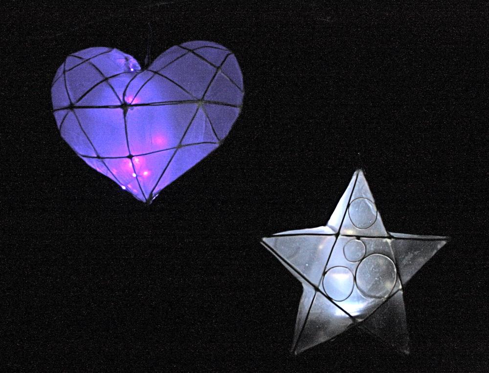 Willow lanterns .JPG