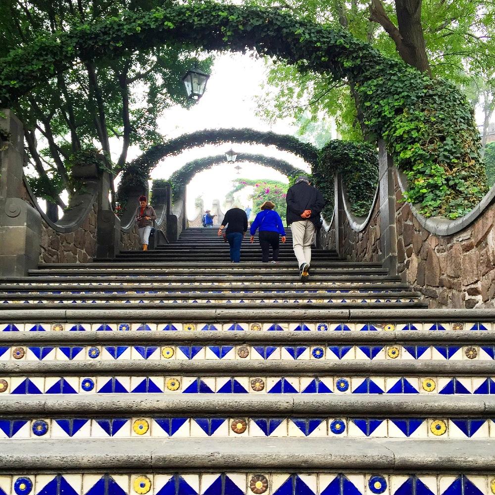 Rachel Landers Mexico City