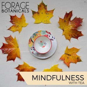 MINDFULNESS-WITH-TEA-mp3-image-300x300.jpg