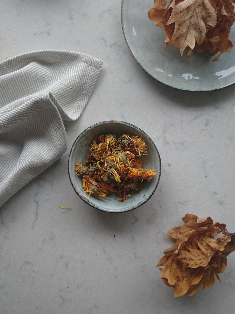 Calendula officinalis (Marigold)