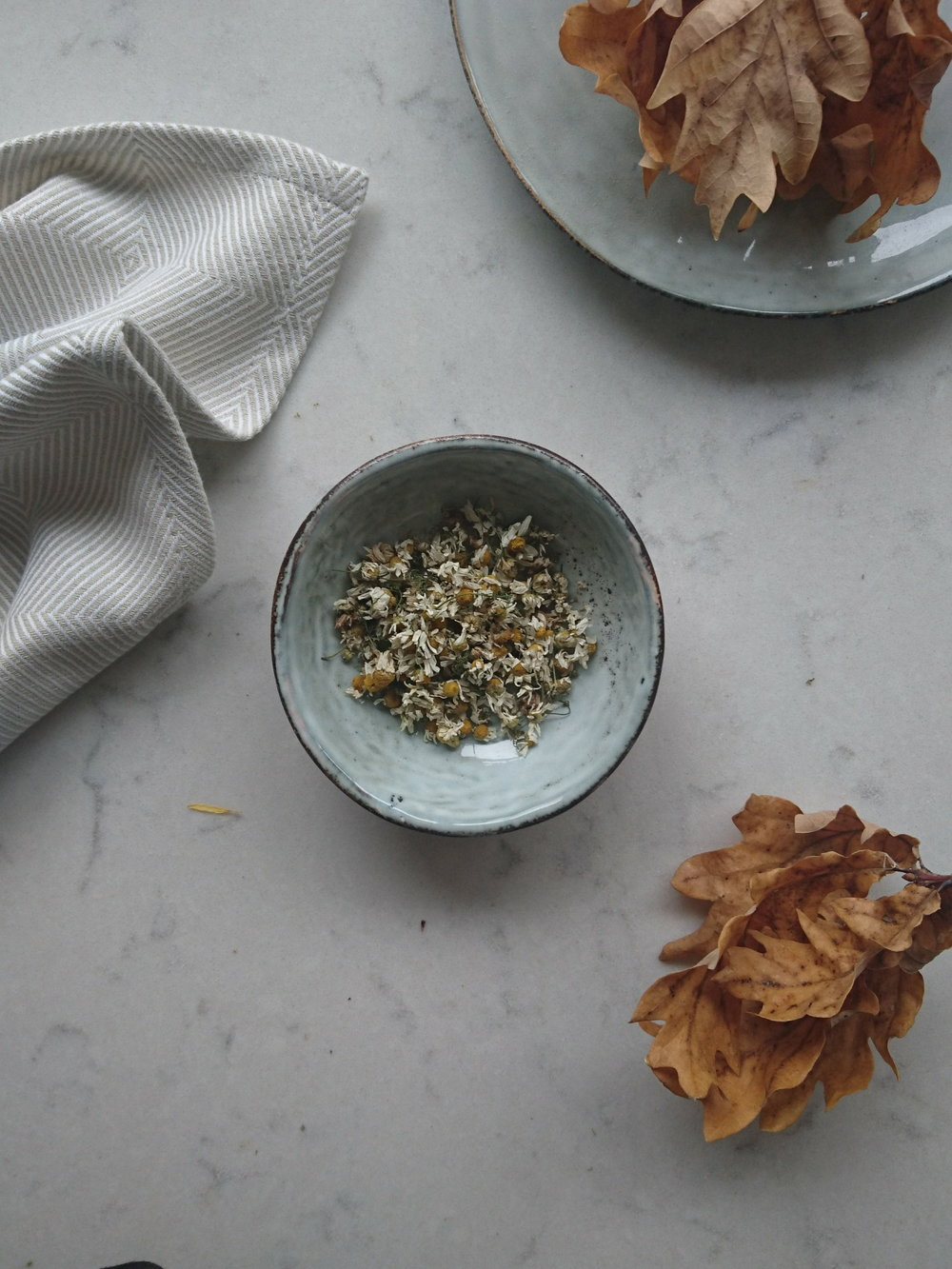Chamomilla recutita (Chamomile)