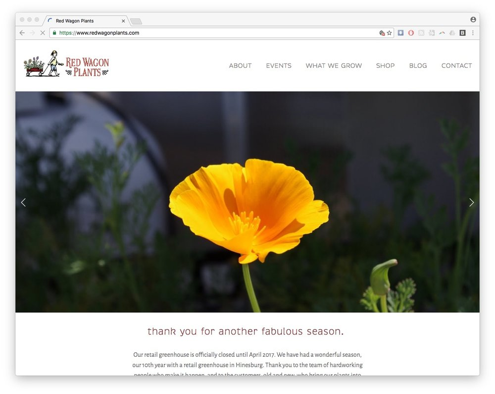 red wagon plants vermont homepage screenshot web design squarespace