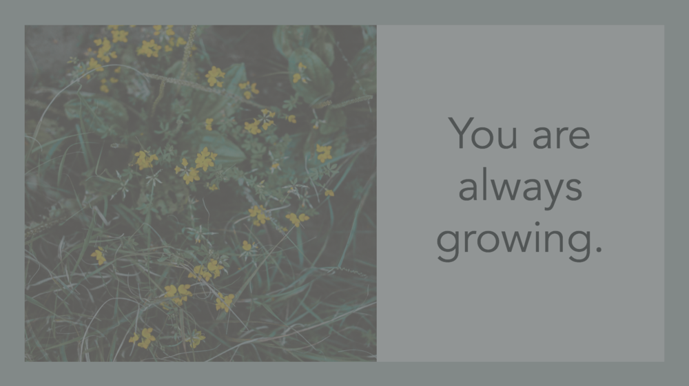 Module 4.1 You are always growing.