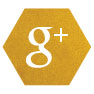 KE Social Media Icons_google +.jpg