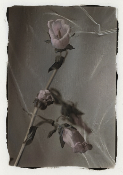 hand painted silver gelatin photograph