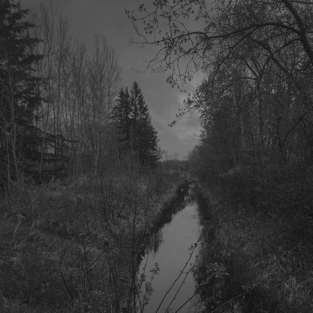 creek_web.jpg