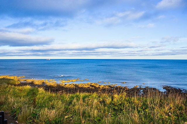 Never miss a sunny day in Britain! Get around and explore! . . . . . . . #landscape #sea #tyne #tynemouthbeach #tyneandwear #northeast #travelblogger #photooftheday #passionpassport #lonelyplanet #lonelyplanetengland #england #britain #northumberland #travelgram #blue #yellow #green #sunny #thegreatquotator #northeastcaptures #citizenoftheworld #tourist #explore