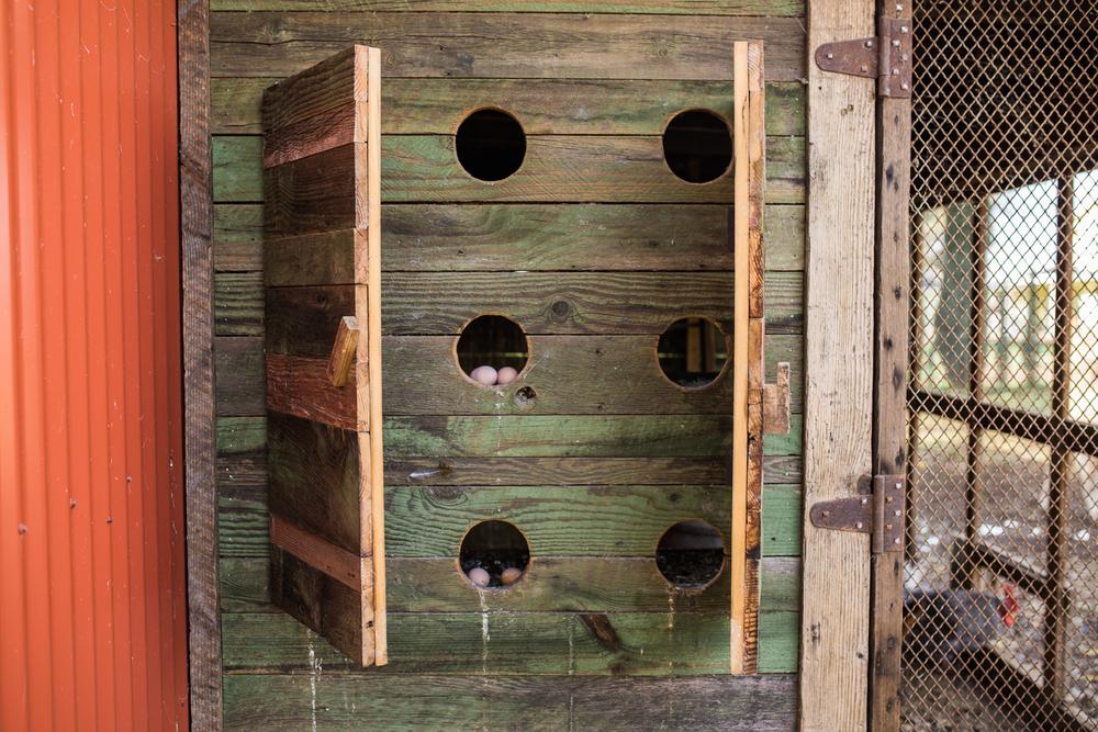 airehart-construction-chico-farm-house-rustic-117.jpg