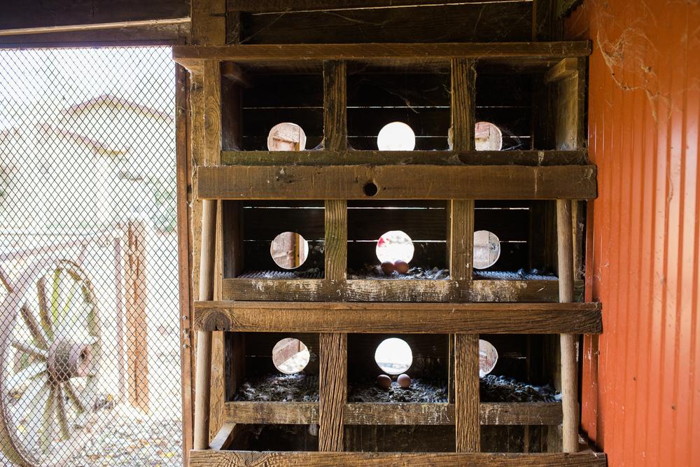airehart-construction-chico-farm-house-rustic-121.jpg