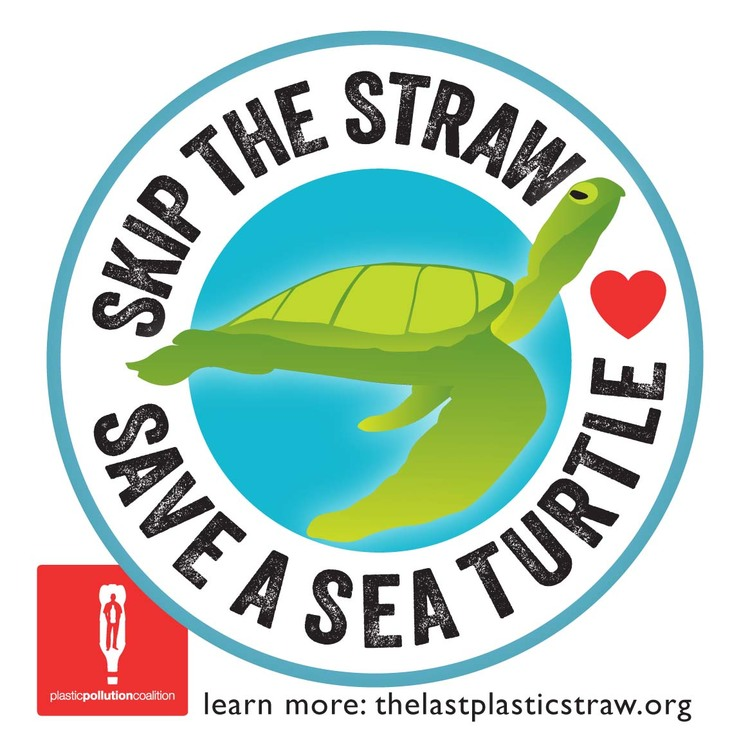 Image credit http://www.plasticpollutioncoalition.org/no-straw-please/