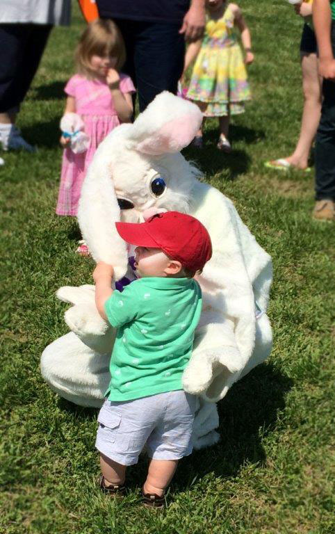 bunny copy.jpg