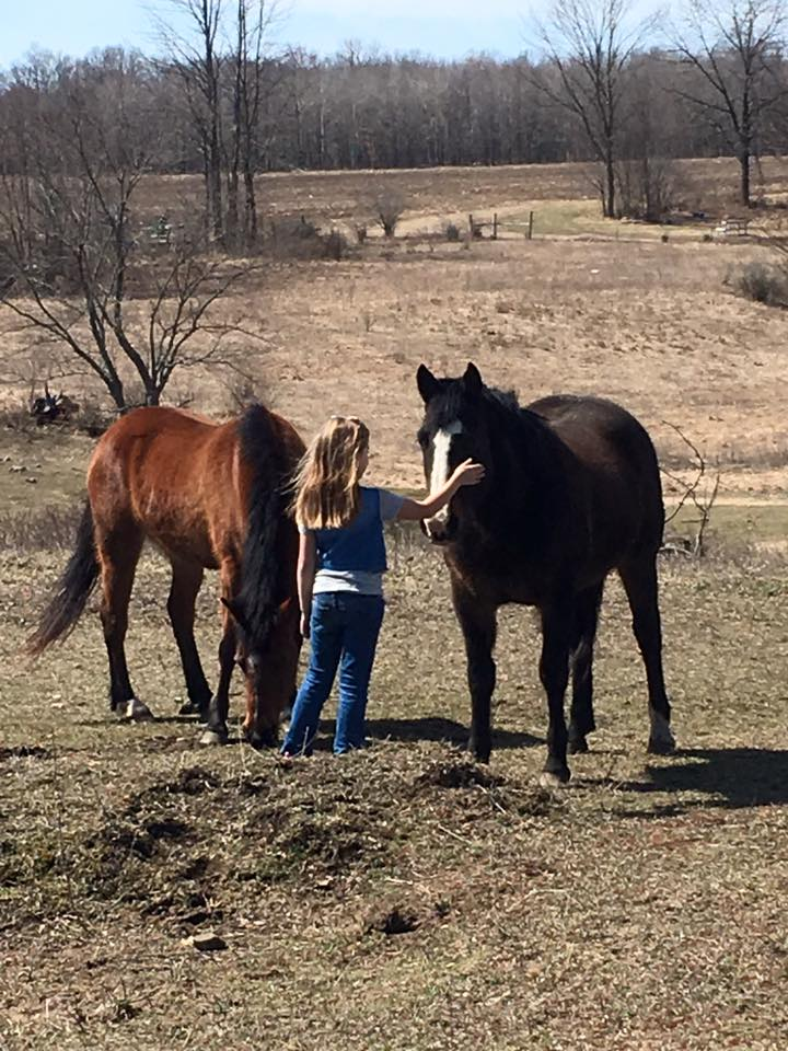 grace and horses.jpg