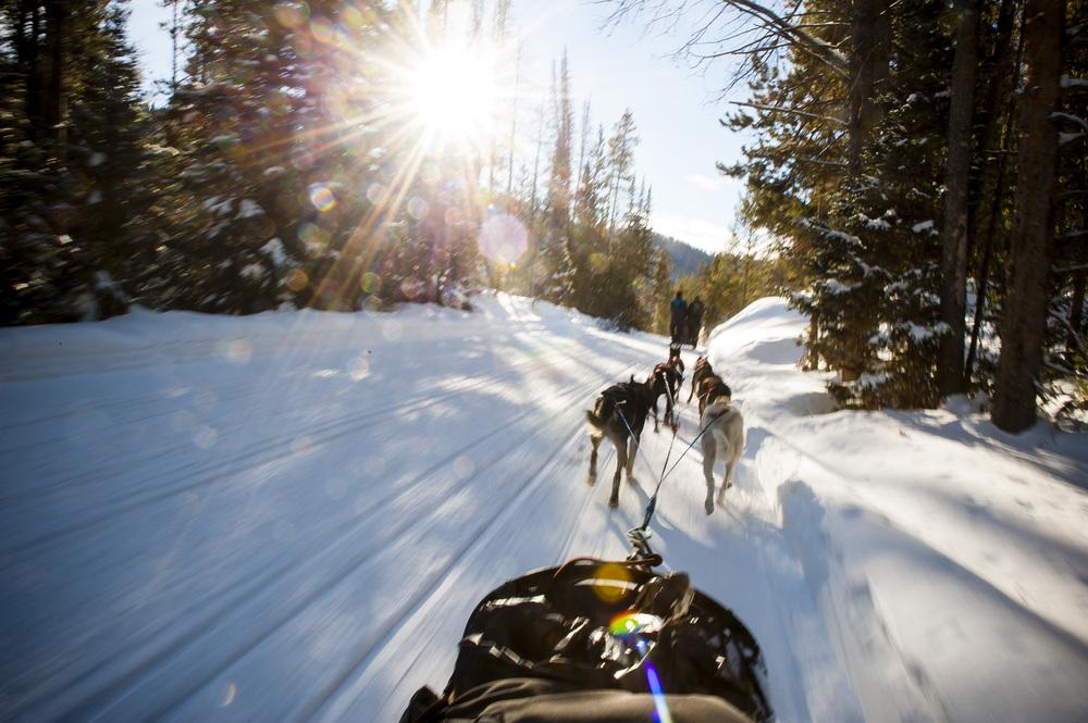 Winter Sled, Wyoming