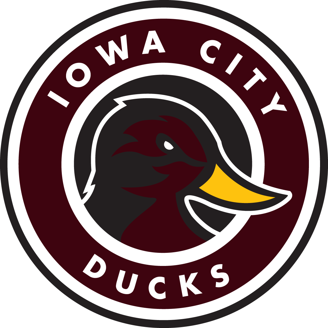 Iowa City Ducks