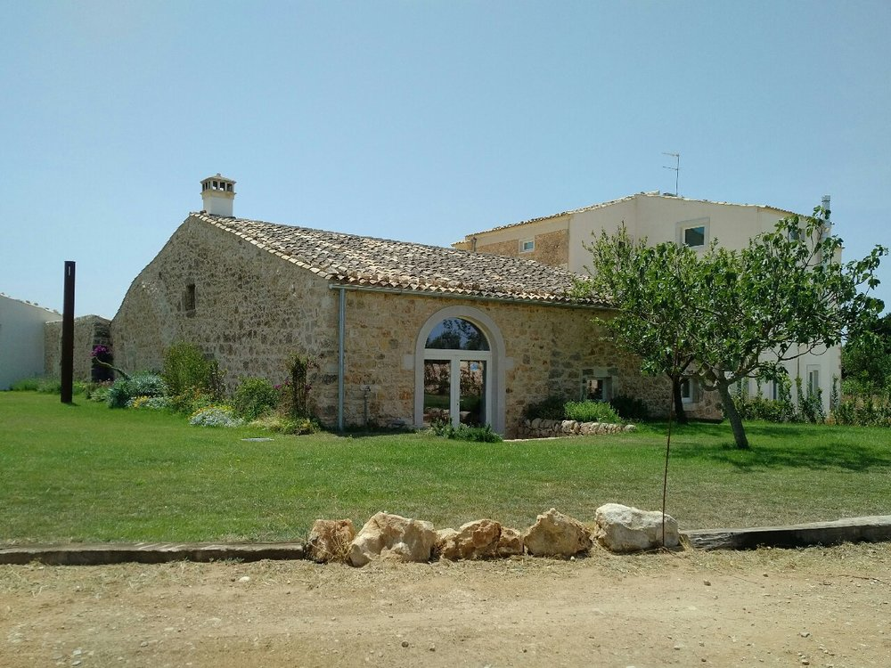 Sicily Tour vineyards