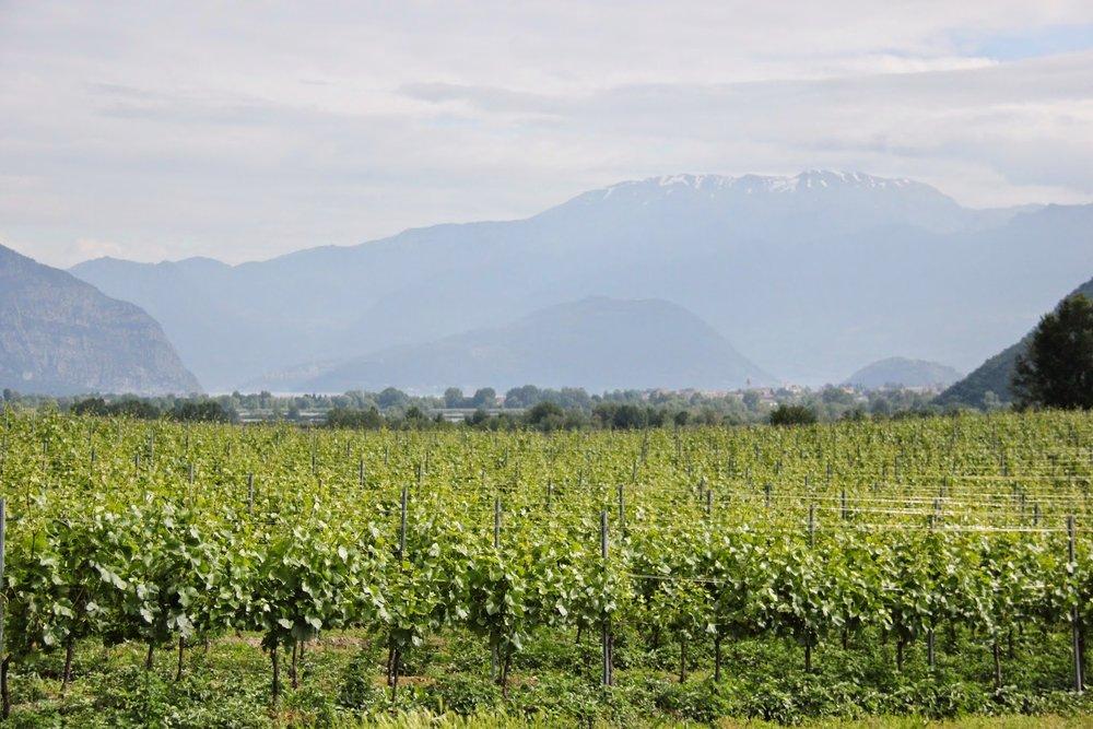 Beautiful Lake Garda and the Alps!