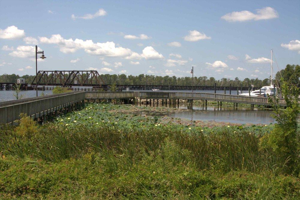 Washington Wetlands 1.jpg