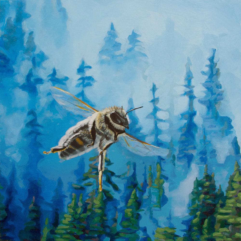 Bee Study