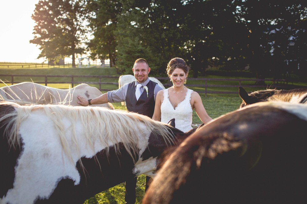 Lakeview_Farm_Wedding_Cambria_Creative-2923.jpg