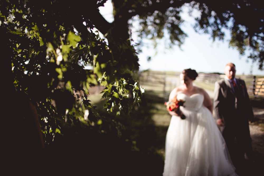 Cambria_Lauxmont_Farms_Wedding_Photography-0846.jpg