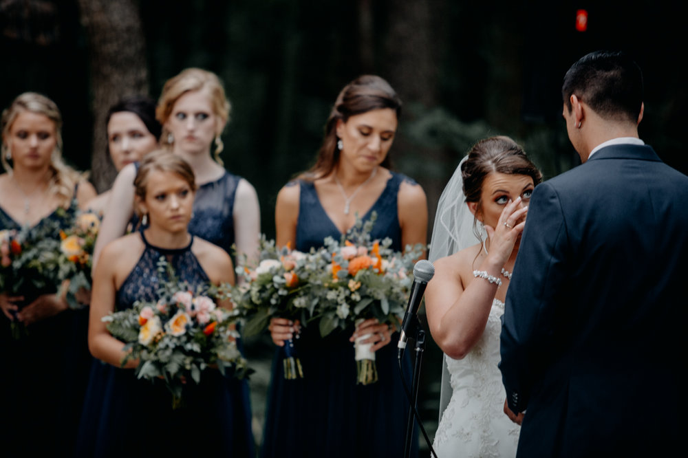 Cambria_Creative_Honeysuckle_Ridge_wedding_photography-1720.jpg
