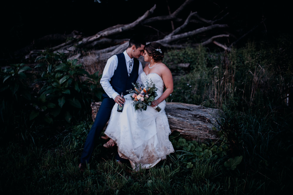 Cambria_Creative_Honeysuckle_Ridge_wedding_photography-2976.jpg