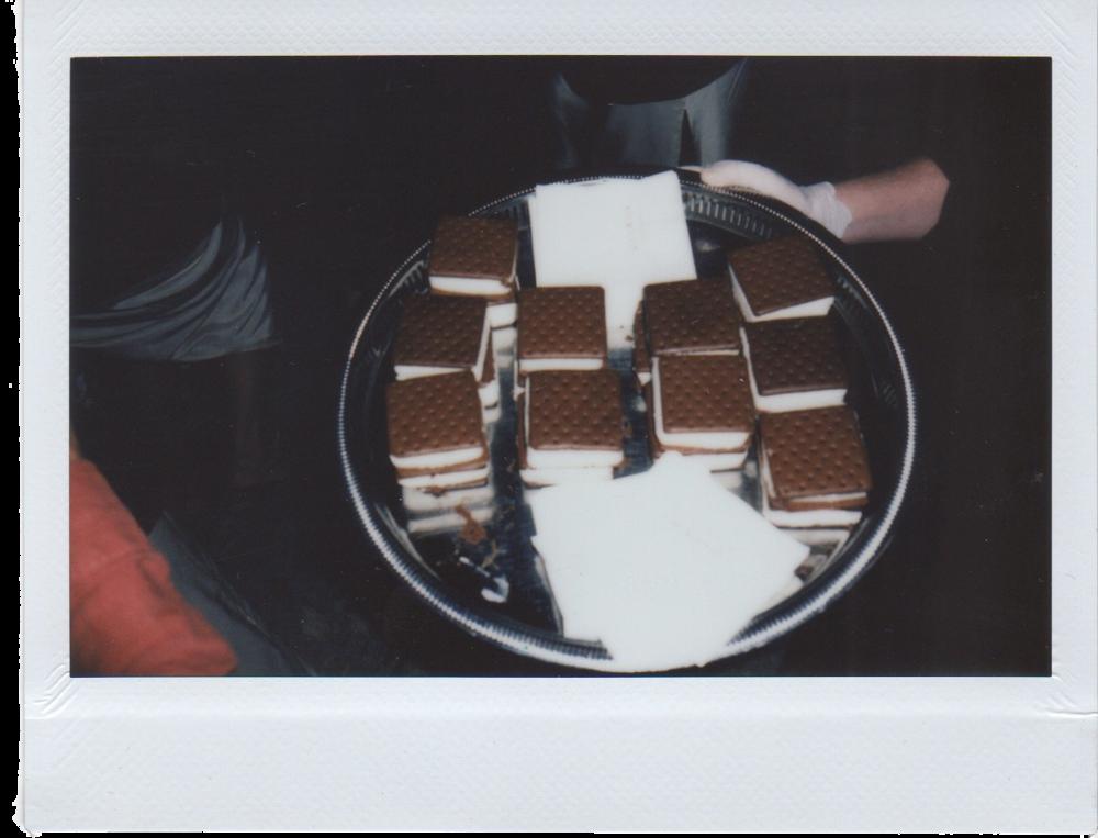 AlexGrant-Polaroids-072_Edit.png