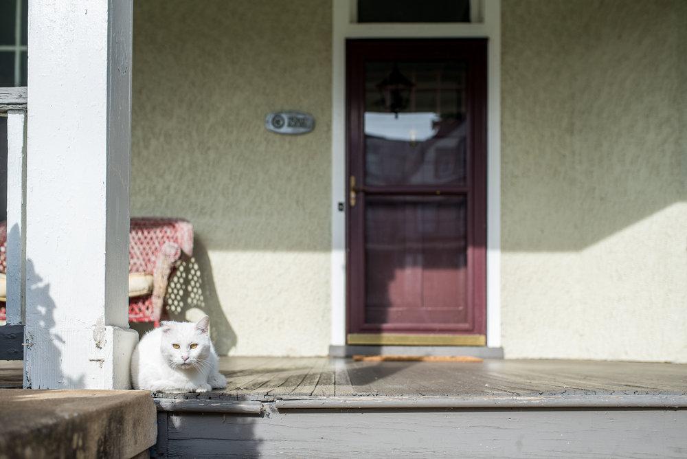House111.jpg