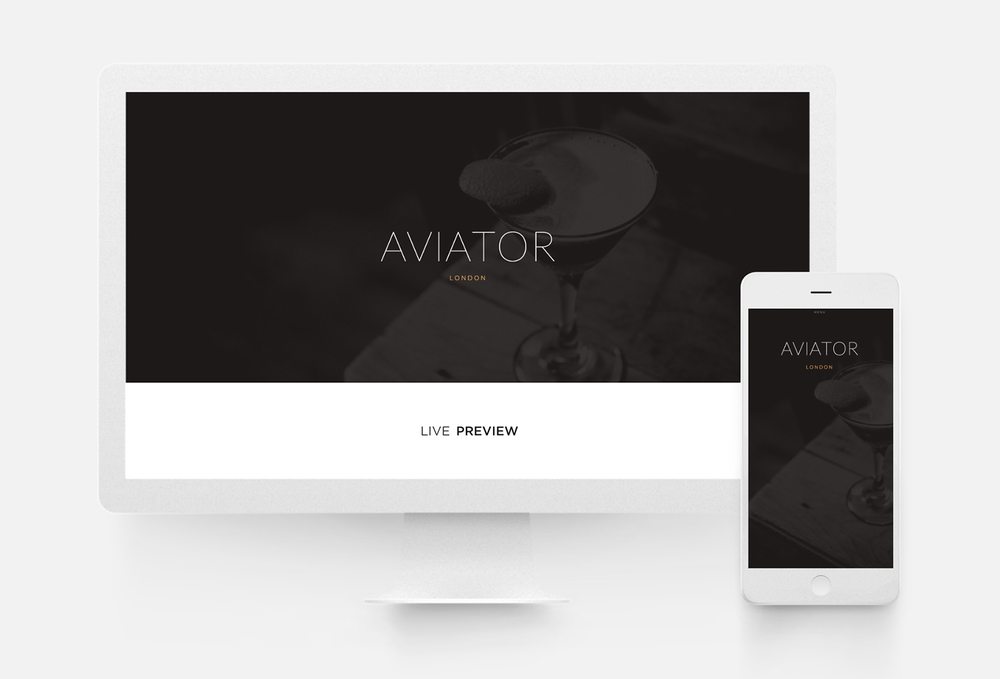squarespace-aviator-template-10twelve-creative-agency-glenview-il.jpg