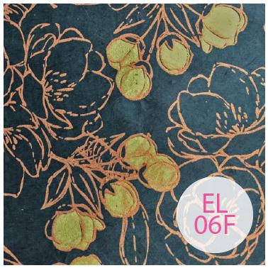 EL06F.png