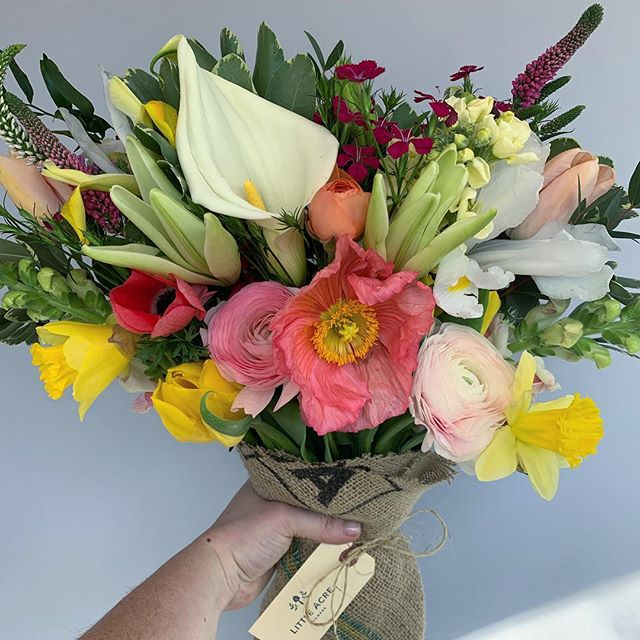 I got a little buried in flower work over the past week or so and I'm finally getting around to sharing some things I've been working on! Loving this time of year. So many of my favorites all at once . . . . . #callalily #daffodil #icelandpoppy #ranunculus #iris #tulip #anemone #stockflower #handtiedbouquet #localflowers #dcflorist #springbouquet #grownnotflown #americangrownflowers #littleacredc
