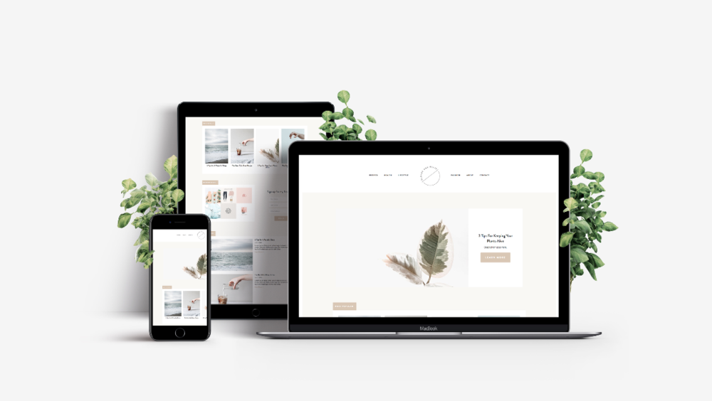 Sloane and Ollie Squarespace Template