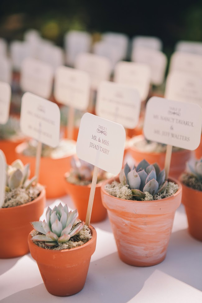 J Wiley Photography Gainey Vineyard Wedding Felici Events Succulent Escort Cards