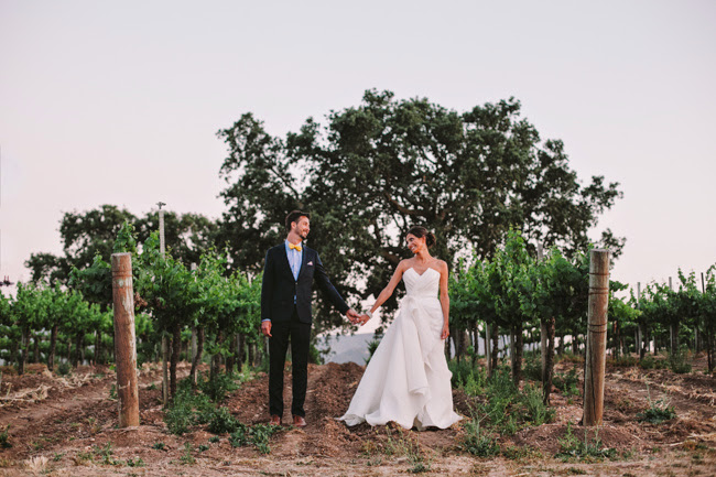 J Wiley Photography Gainey Vineyard Wedding Felici Events vineyard backdrop