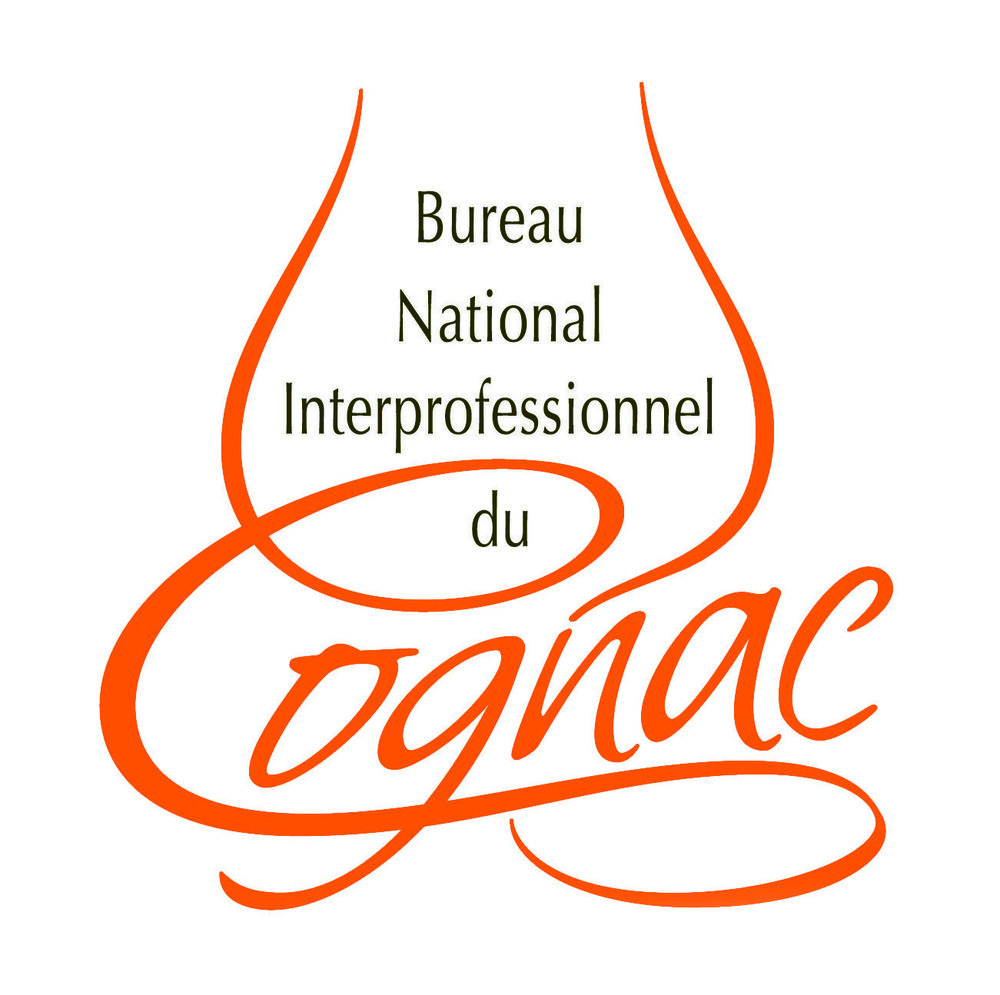 logo-BNIC.jpg