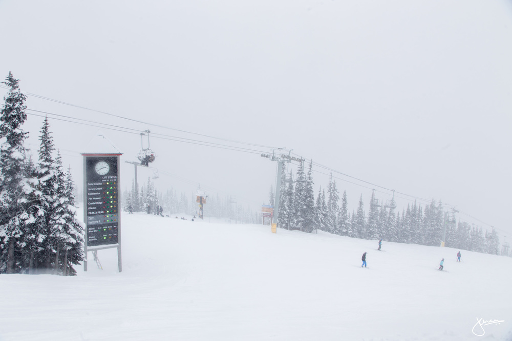 White-out at Blackcomb Mountain
