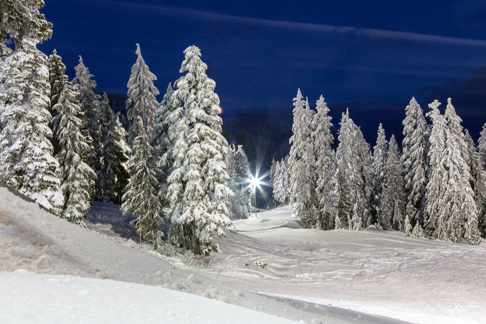 Nighttime on Mount Seymour