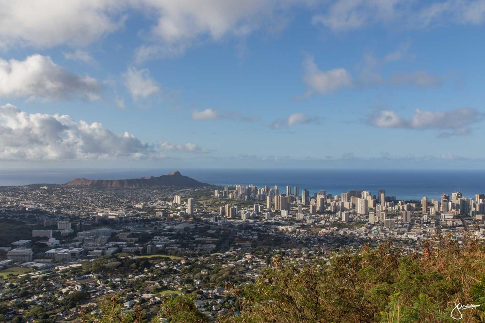 Pu'u 'Ualaka'a State Park - Looking at Diamond Head & Waikiki