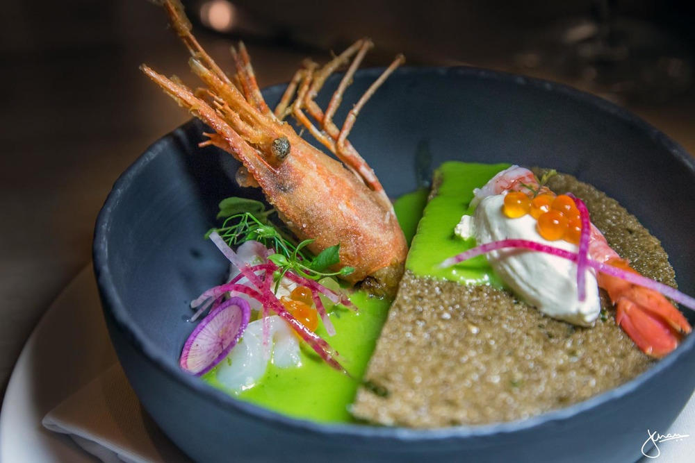 App Feature Soup Chilled Cucumber 'Gazpacho', Poached Spot Prawn with Crispy Head, Gurnard Sashimi, Pumpernickle Crostini, Caraway Cream, Ikura (Cured Salmon Roe)