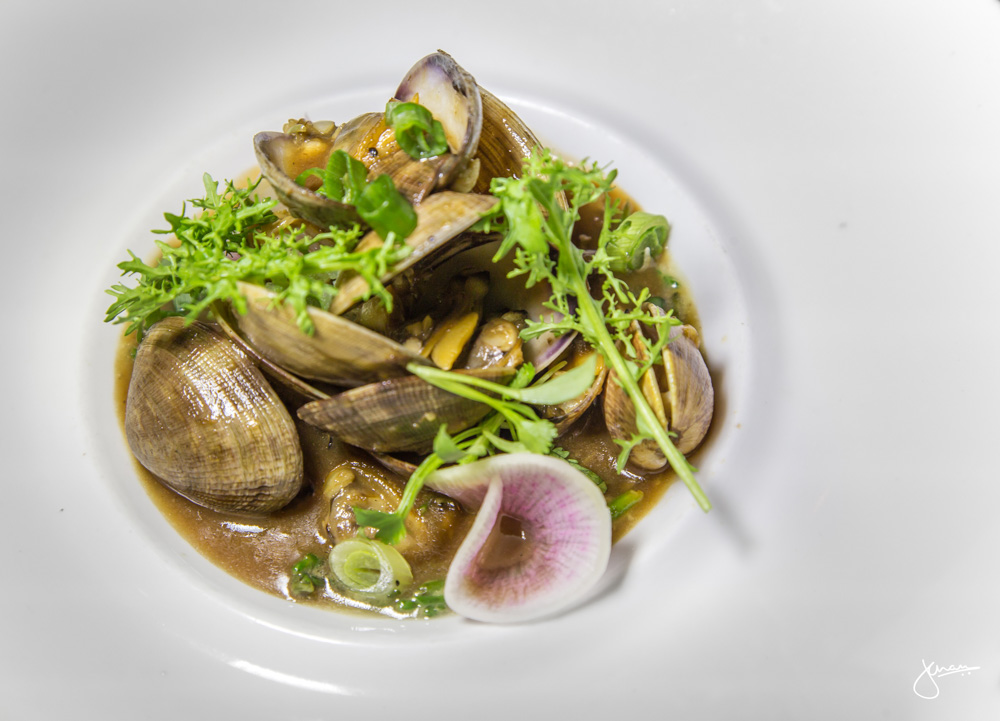Manila Clams - spiced black bean sauce