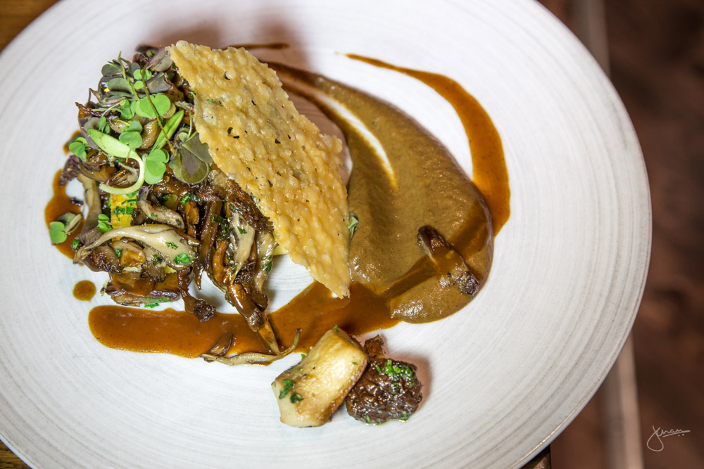 Seared Polenta - assorted mushrooms, vegetable demi-glace, cheese crisp