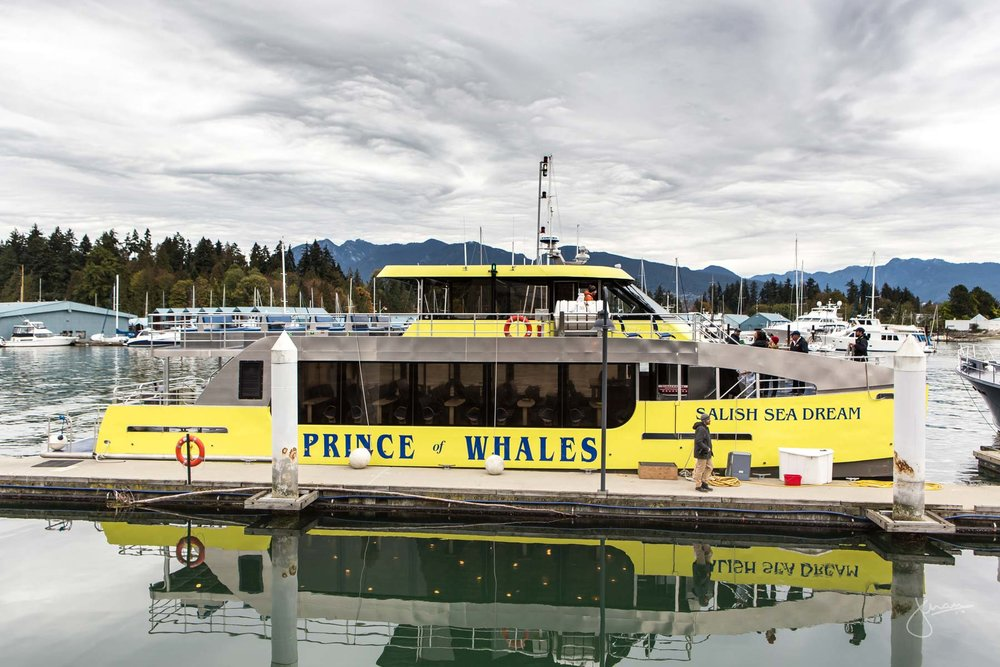 Prince of Whales, Salish Sea Dream