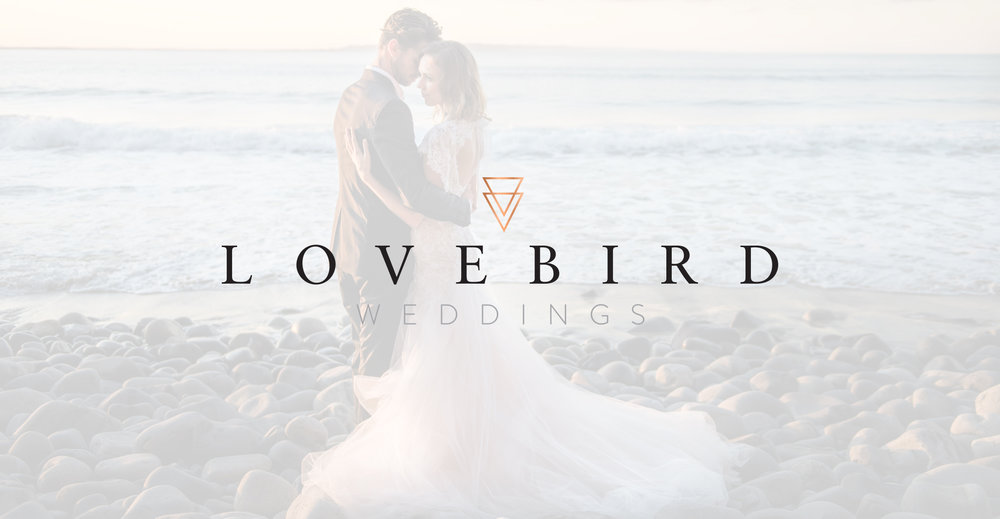 Lovebird 2.jpg