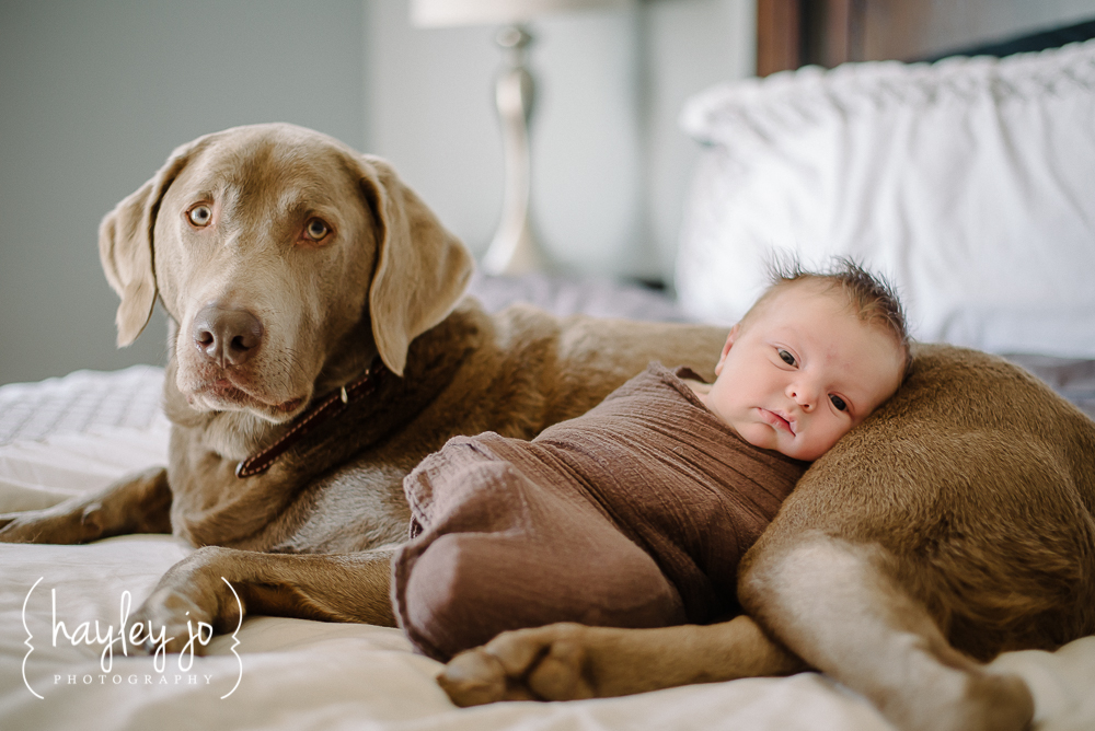 atlanta-newborn-photographer-photography-hayley-jo-photography-5
