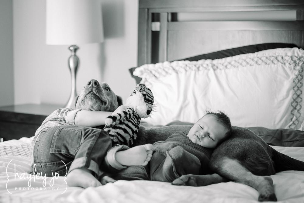 atlanta-newborn-photographer-photography-hayley-jo-photography-6