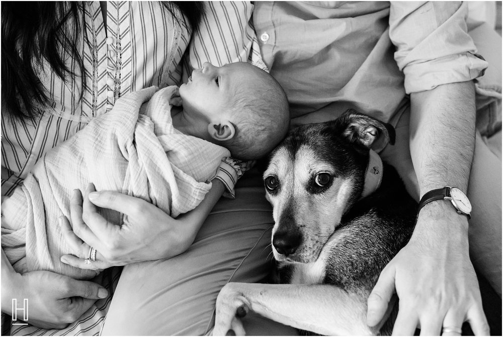 atlanta_newborn_photographer-photography_0147.jpg